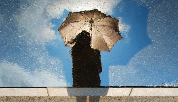 How blue is too blue? Depression and divorce