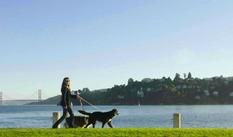 Simple steps to take while preparing for divorce in California