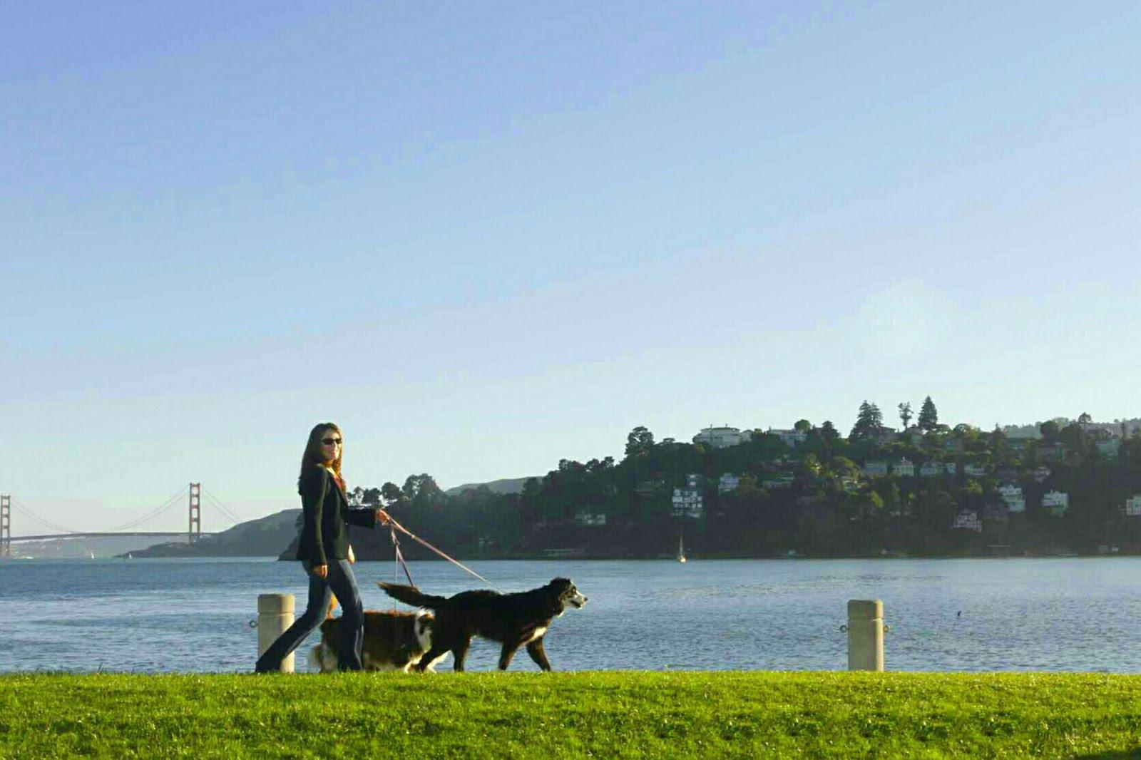 Helene L Taylor Tiburon California Golden Gate Bridge
